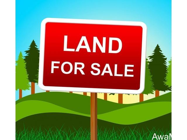 267Acres of Land at Ogun state - CALL 08033895591 - 1