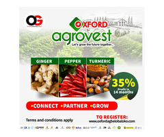 OXFORD AGROVEST - Pepper, Ginger and Tumeric Farming (Call 08106471906) - Image 1