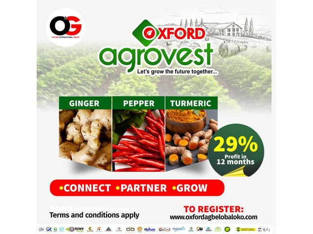OXFORD AGROVEST - Pepper, Ginger and Tumeric Farming (Call 08106471906) - 2