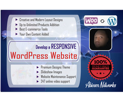 Cheap Business and E-Commerce Website Designs - Image 1