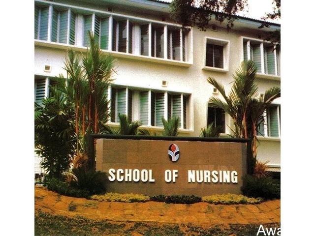 nt of Nursing (BNSc Programme) Sci., Bowen University, Iwo. - 1