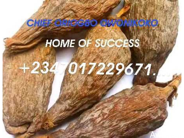 The best powerful spiritual father of herbalist and native doctor +2347017229671... - 1