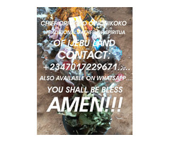The best powerful spiritual father of herbalist and native doctor +2347017229671... - Image 2