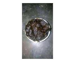 The real best herbalist in Nigeria - Image 2
