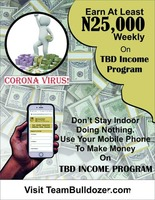 Team bulldozer income you can earn up to 5k per week  - Image 2